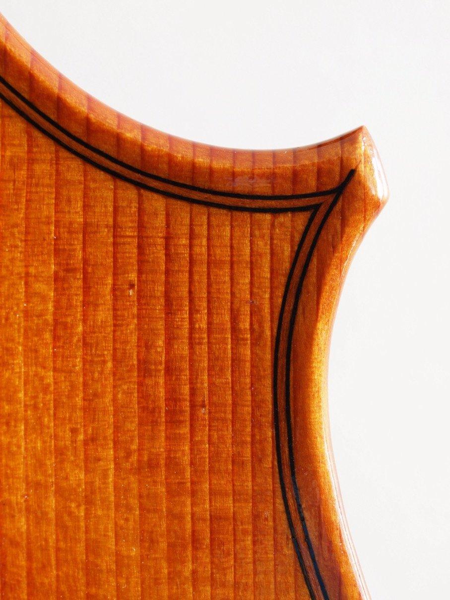 Viola 2013 eigenes Modell