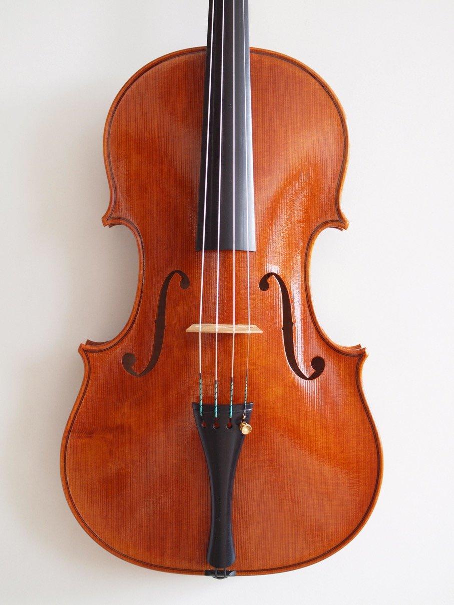 Viola Silbermedaille 2014